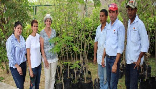 Grupo Verde gestionó donación de 80 árboles para nuestro colegio